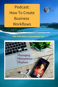 Successful Workflows/Documenting Business Processes/Podcast/sanespaces.com