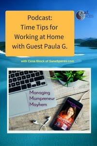 Time Management Tips/sanespaces.com/podcast