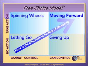 Free Choice Model for Decision Making, SaneSpaces.com, Cena Block