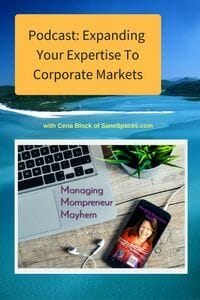 Expanding your expertise to corporate markets   Podcast   SaneSpaces.com