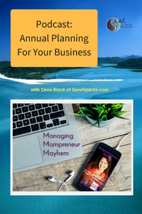 Annual Planning for Your Business|Podcast|SaneSpaces.com